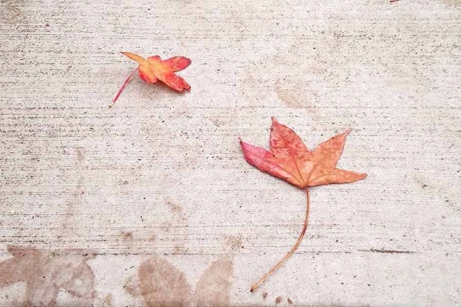 Az őszi betonozás kihívásai